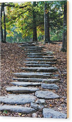 Steps Of Fall Wood Print