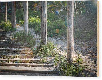 Steps Off The Beach Wood Print