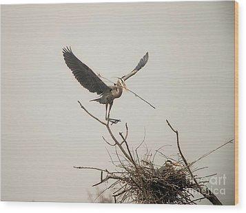 Wood Print featuring the photograph Stick Man by David Bearden