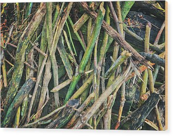 Stick Pile At Retzer Nature Center Wood Print by Jennifer Rondinelli Reilly - Fine Art Photography