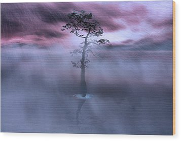Stick Together The Storm Will Pass Wood Print by Gray  Artus