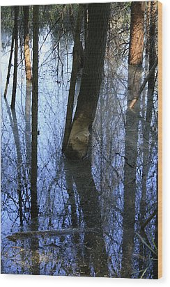 Still Wood Print by Alan Rutherford
