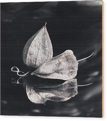 Still Life #14167 Wood Print