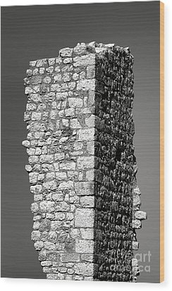 Still Standing Wood Print by Olivier Le Queinec