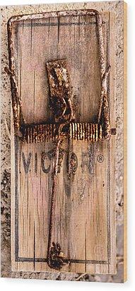 Still The Best Wood Print by Onyonet  Photo Studios