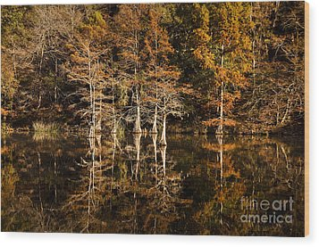 Still Waters On Beaver's Bend Wood Print