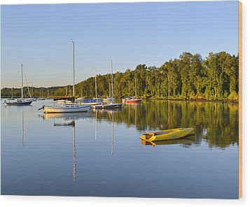 Still Waters On The Potomac River At Belle Haven Marina Virginia Wood Print by Brendan Reals