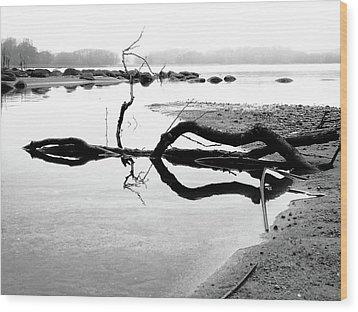 Stillness Wood Print by Karen Stahlros