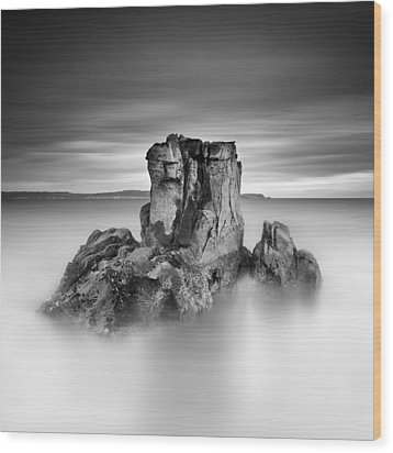 Stone Face Wood Print by Pawel Klarecki