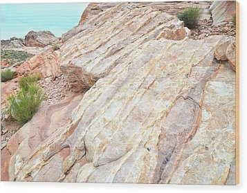 Wood Print featuring the photograph Stone Feet In Valley Of Fire by Ray Mathis