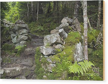 Stone Gate - Edmands Path - White Mountains New Hampshire  Wood Print by Erin Paul Donovan