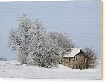 Stone House In Winter Wood Print by Gary Gunderson