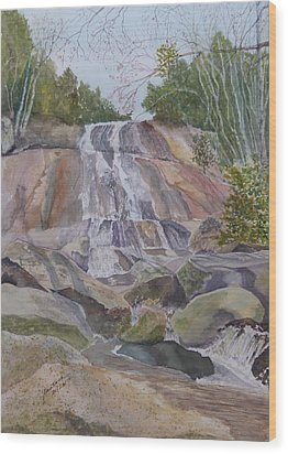 Wood Print featuring the painting Stone Mountain Falls April 2013 by Joel Deutsch