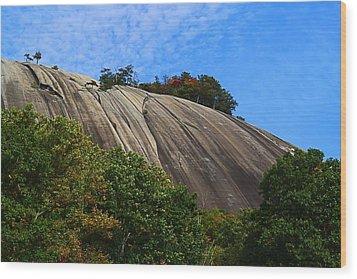 Stone Mountain Wood Print by Kathryn Meyer