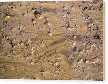 Stones In A Mud Water Wash Wood Print by John Williams