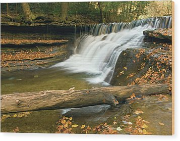 Wood Print featuring the photograph Stoneybrook by Timothy McIntyre