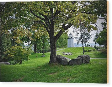 Stony Point Landscape Wood Print