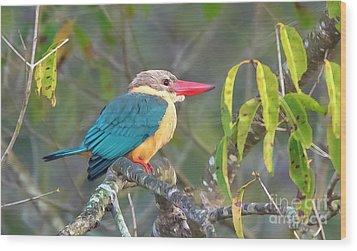Stork-billed Kingfisher Wood Print