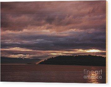 Storm 3 Wood Print by Elaine Hunter