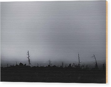 Wood Print featuring the photograph Storm by Cat Connor