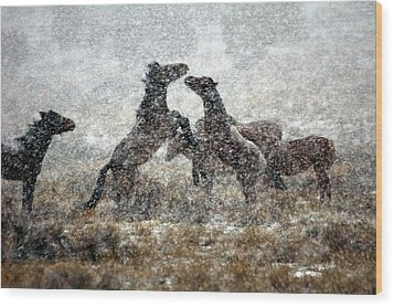 Storm Fight Wood Print by Gene Praag