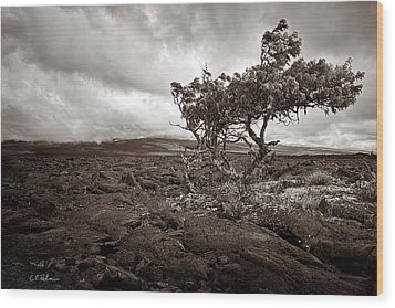 Storm Moving In - Sepia Wood Print by Christopher Holmes
