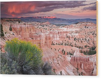 Storm Over Bryce Canyon Wood Print by Eric Foltz