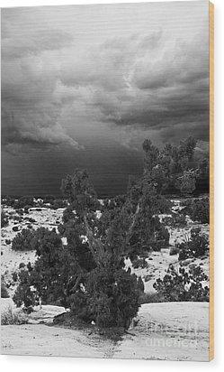 Storm Over Sand Bench Utah Wood Print by John Hermann