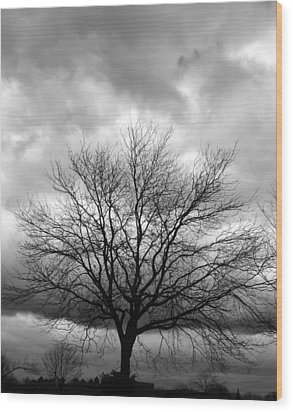Stormy 2 Wood Print by Joanne Coyle