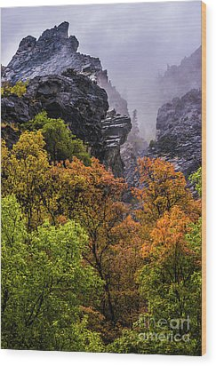 Stormy American Fork Canyon - Wasatch - Utah Wood Print by Gary Whitton