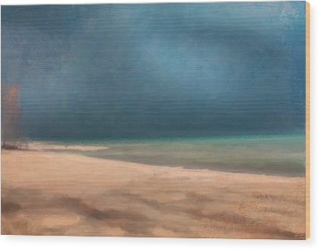 Stormy Lake Huron 2 Wood Print by Chamira Young