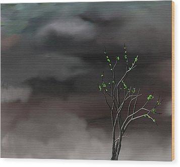 Stormy Weather Wood Print by David Lane