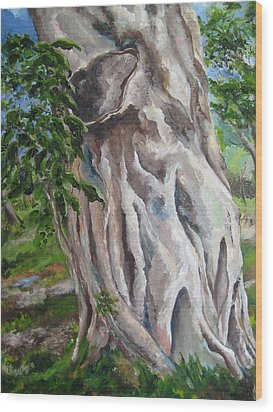 Strangler Fig Wood Print by Lisa Boyd