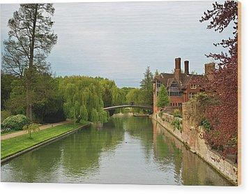 Stratford Upon Avon 2 Wood Print by Douglas Barnett