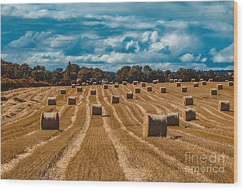 Straw Bales In A Field Wood Print