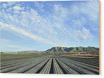 Wood Print featuring the photograph Strawberry Fields Forever 3 by Floyd Snyder
