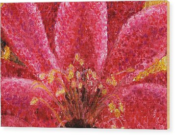 Strawberry Hedgehog Cactus Blossom Wood Print by Cynthia Ann Swan
