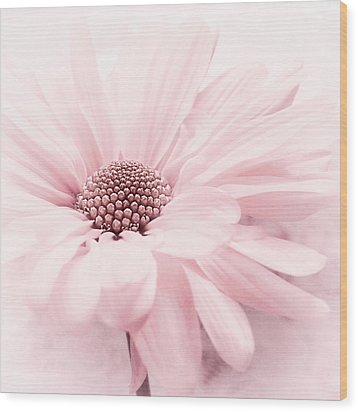 Wood Print featuring the photograph Strawberry Ice by Darlene Kwiatkowski