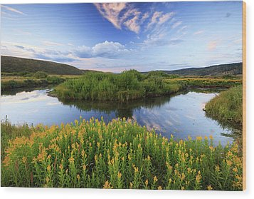 Wood Print featuring the photograph Strawberry River With Summer Flowers. by Johnny Adolphson