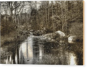 Wood Print featuring the photograph Stream I by Greg DeBeck