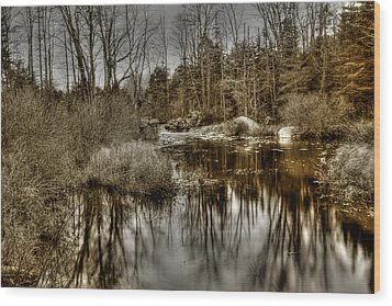 Wood Print featuring the photograph Stream II by Greg DeBeck