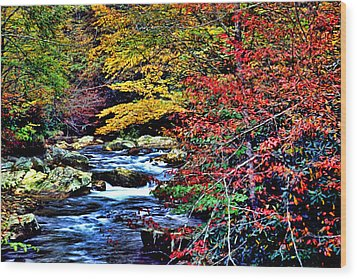 Stream In Autumn Wood Print by Kevin  Sherf