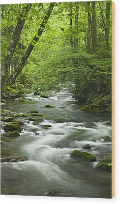 Stream In The Smokies Wood Print