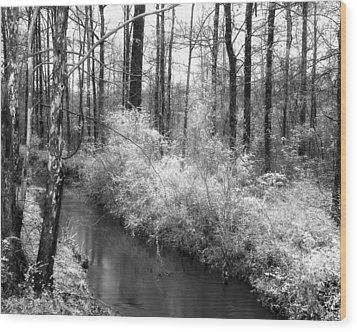 Stream In The Woods Wood Print by Fred Baird