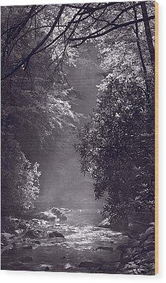 Stream Light B W Wood Print by Steve Gadomski