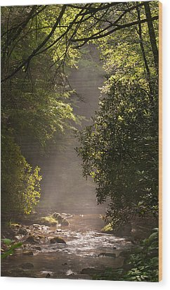 Stream Light Wood Print by Steve Gadomski