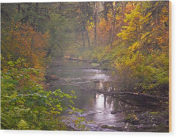 Stream Of The Fall Wood Print by Dale Stillman