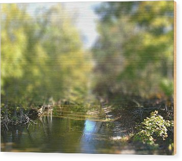 Stream Reflections Wood Print by EricaMaxine  Price