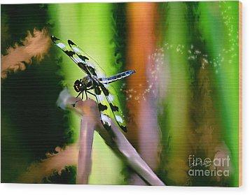 Striped Dragonfly Wood Print
