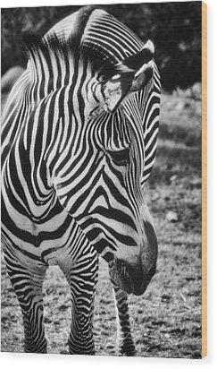 Stripes  Wood Print by Saija  Lehtonen